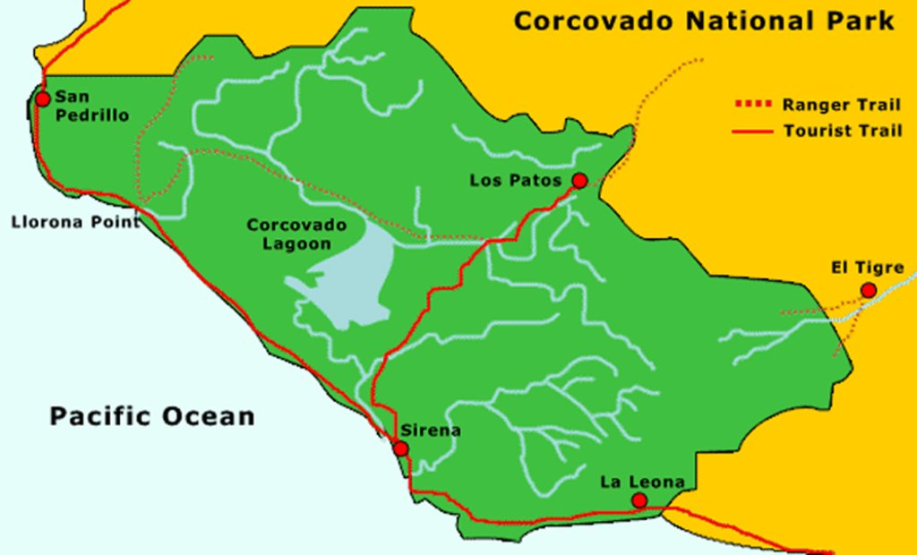 How To Plan a Visit To Corcovado National Park in Osa Peninsula