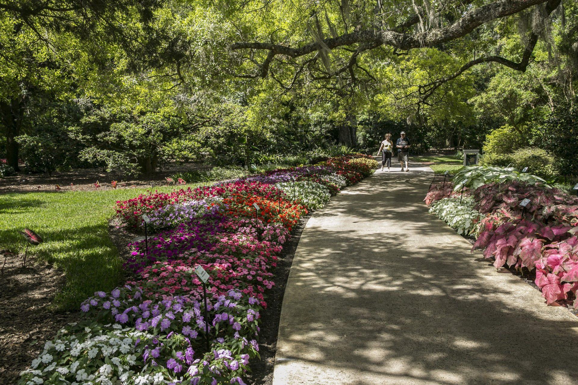 What to do in Orlando: Harry P. Leu Gardens. Photo by Visit Florida Editor via Flickr CC