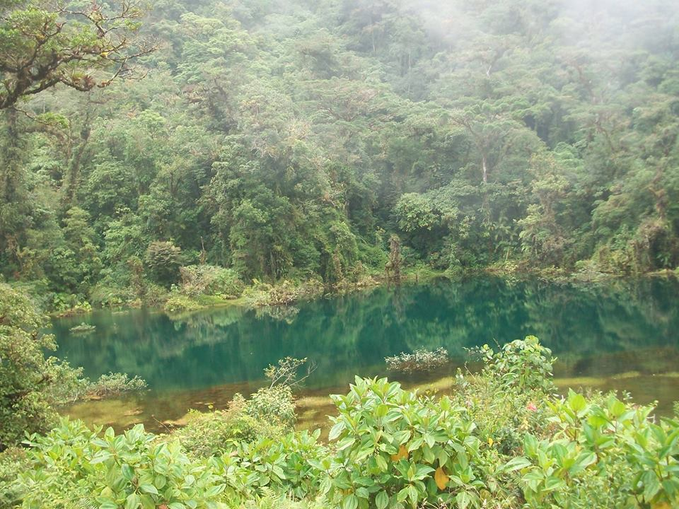 The Complete Guide to Costa Rica National Parks - Juan Castro Blanco
