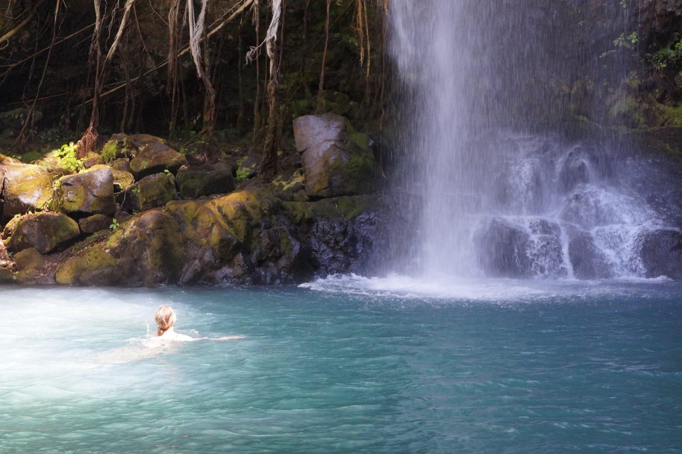 The Complete Guide to Costa Rica National Parks -La Cangreja National Park
