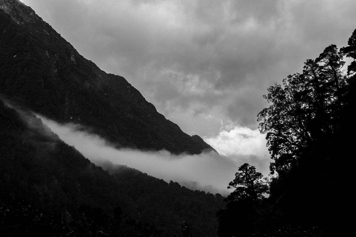 New Zealand South Island Hikes - Copland Track