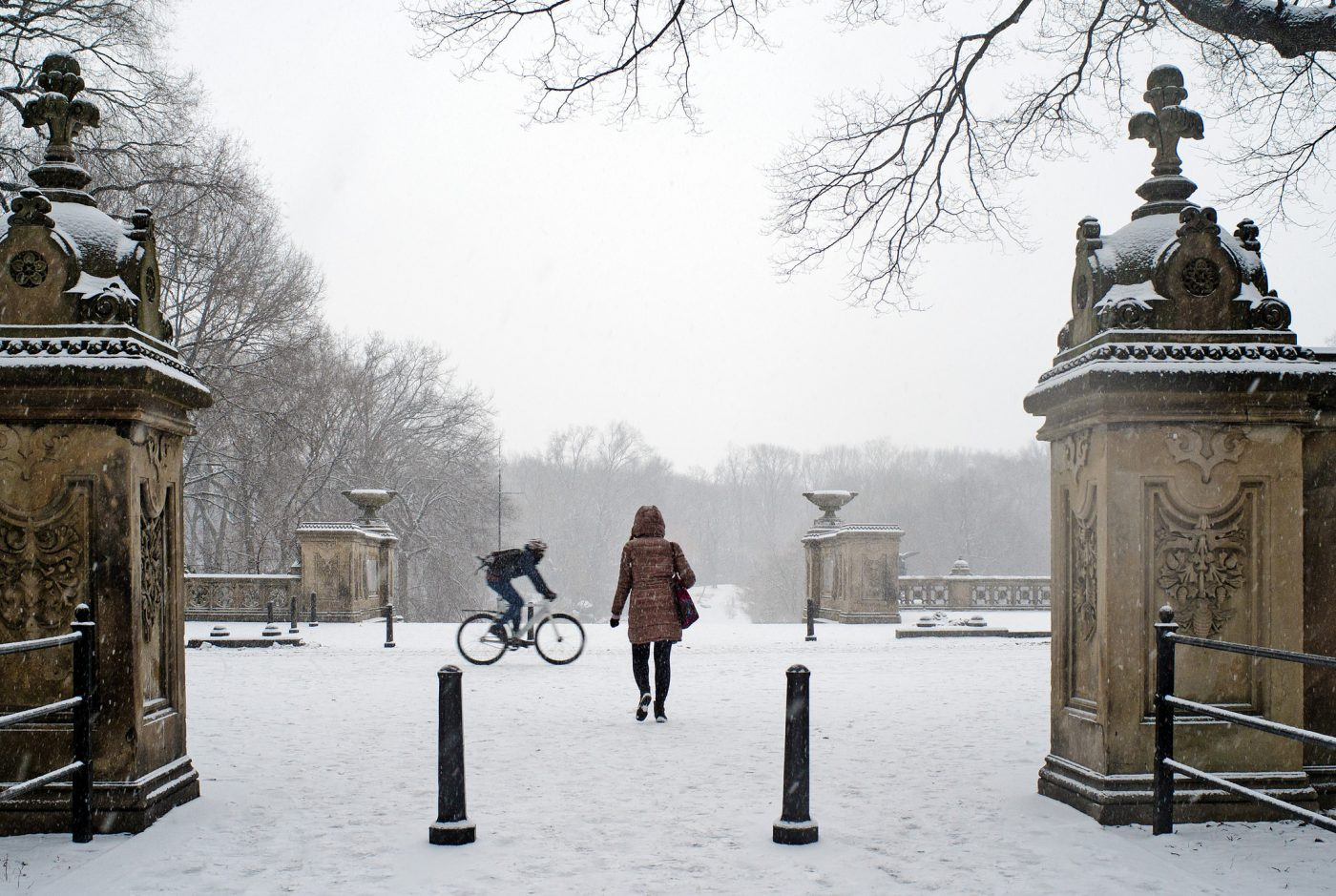 Eco-friendly Hotels New York City: Snow in Central Park