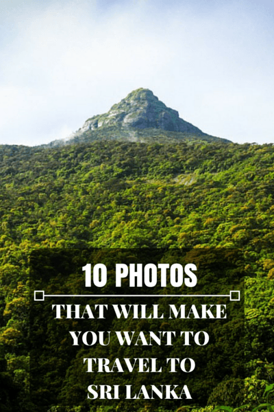 Travel is extremely visual, so put down that guide book and have a look at 10 photos will make you want to travel to Sri Lanka.