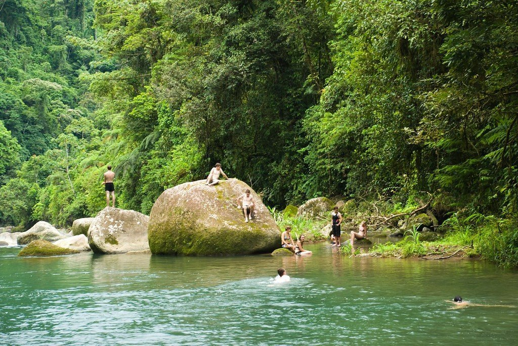 The Complete Guide to Costa Rica National Parks - Barbilla National Park
