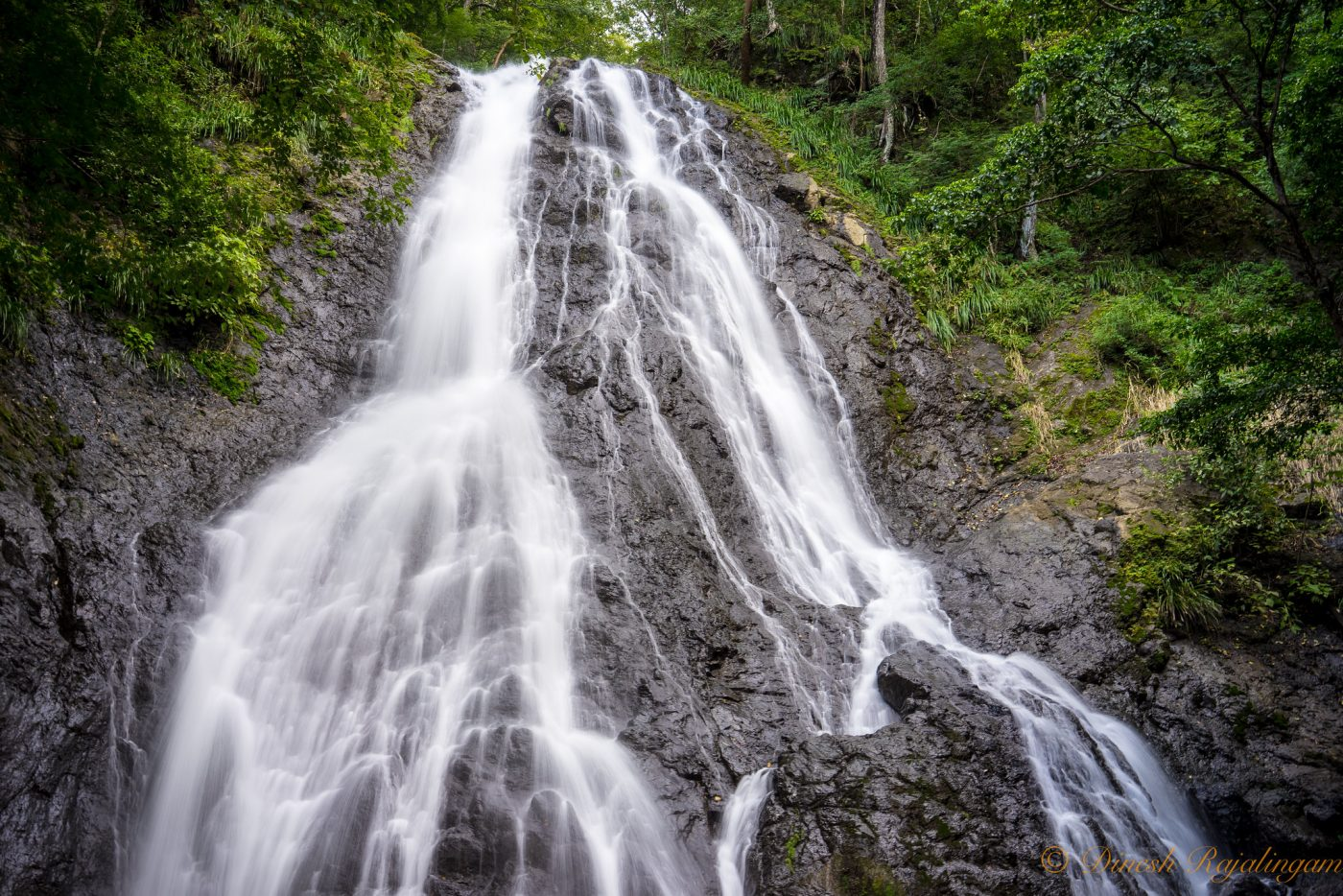 The Complete Guide to Costa Rica National Parks - Diria