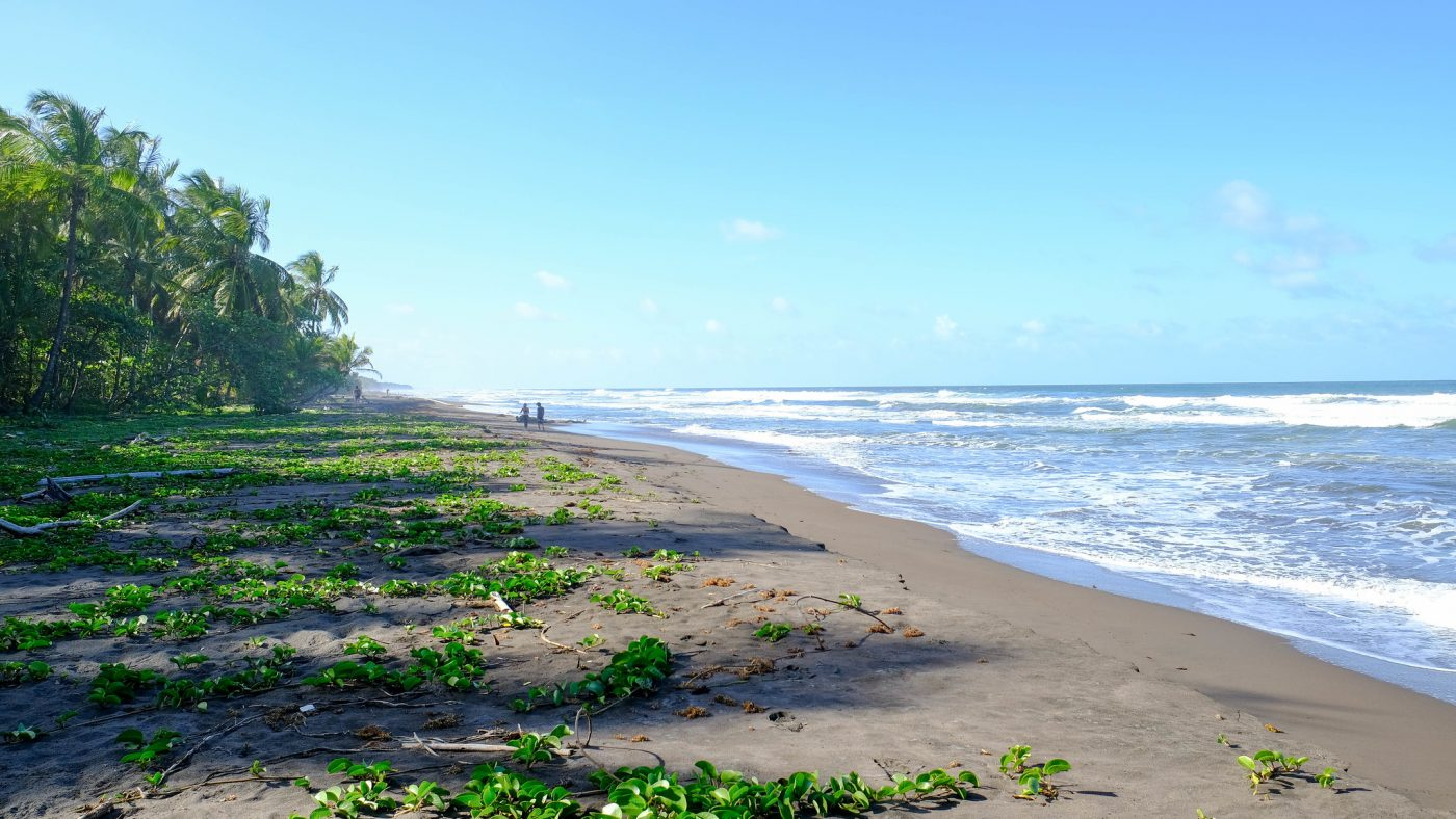 The Complete Guide to Costa Rica National Parks - tortuguero