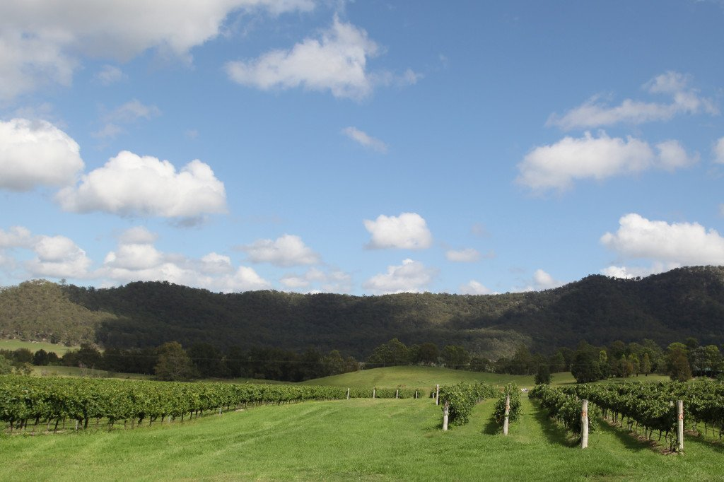Hunter Valley Wine Region, NSW, Australia. Photo Credit: Flickr CC Lock the Gate Alliance