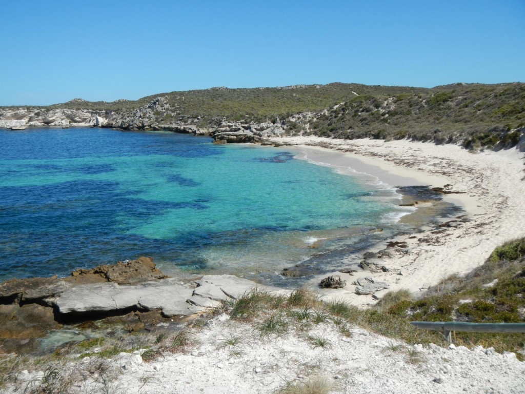 Rottnest Island. Photo via Flickr CC Finn Pröpper