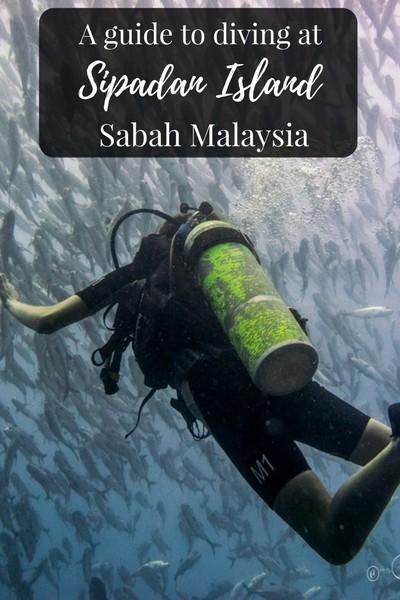 A Guide to Diving at Sipadan Island Malaysia