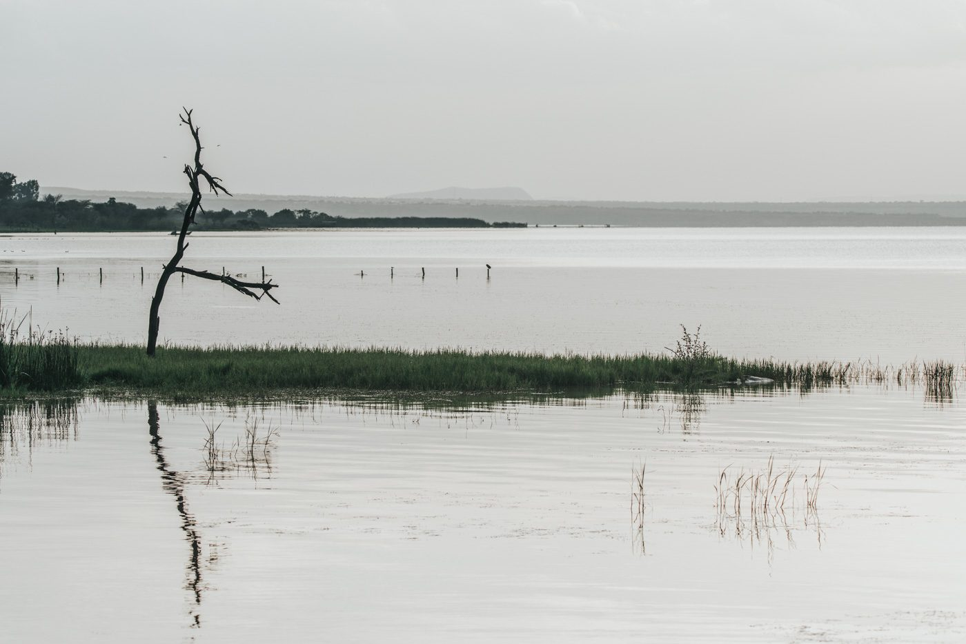 Lake Langano, Southern Ethiopia