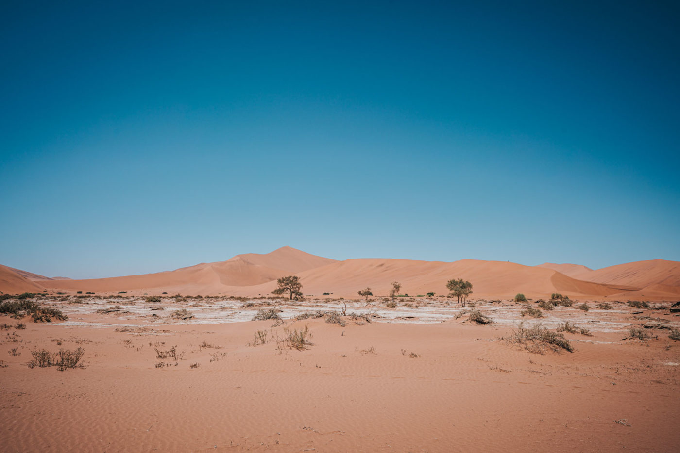 Big Mama Dune, Sossusvlei, Namibia