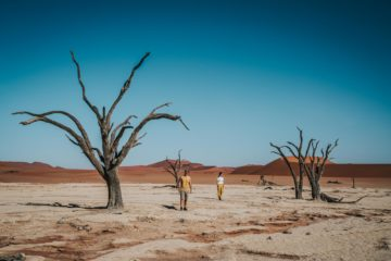 Guide to Visiting Deadvlei & Sossusvlei, Namibia: Things to Do and Important Tips for Your Visit