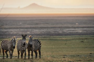 East Africa Bucket List: 9 Highlights and Amazing Experiences to Have in East Africa