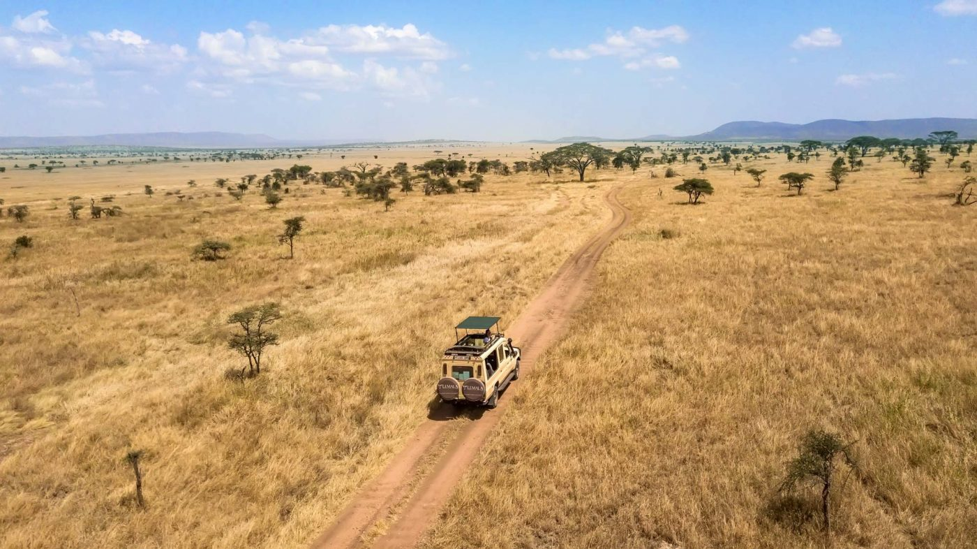 Serengeti Safari, jeep tour