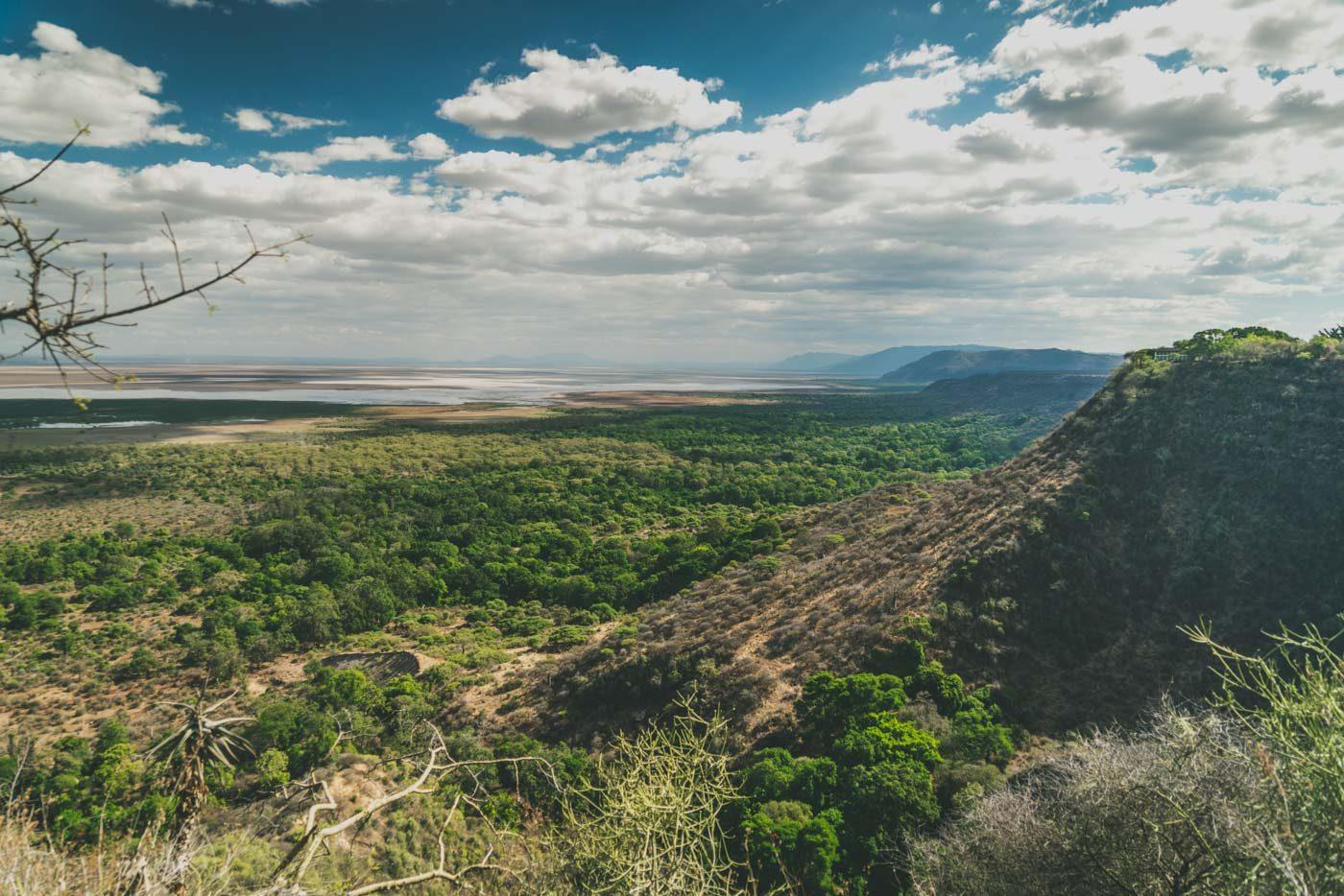 Safari in Tanzania: Lake Manyara National Park, Tanzania