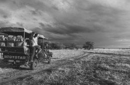 On a safari in Tanzania with &Beyond