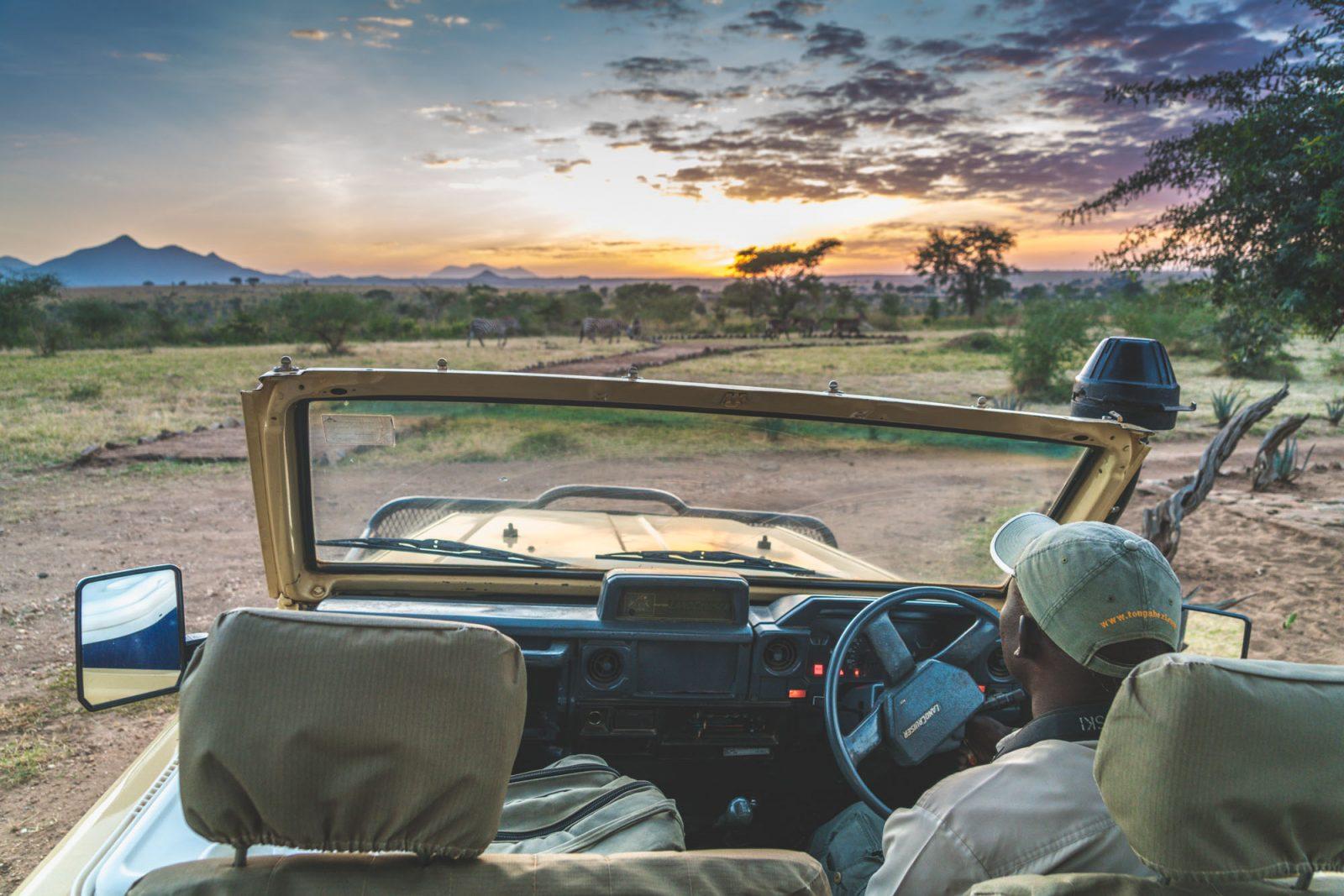 On a safari with Julius