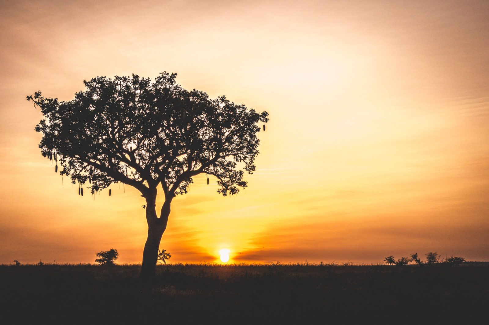 Sunset in Kidepo National Park, Northern Uganda