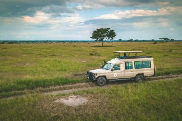 Ultimate Uganda Safari and Other Things to Do in Uganda