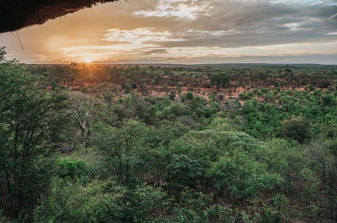 Zambezi National Park. View from Victoria Falls Safari Lodge