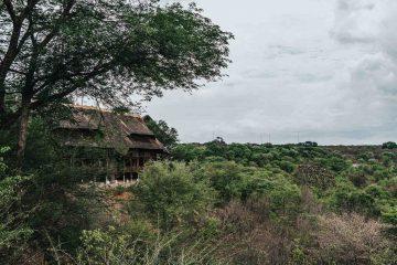 Staying at Victoria Falls Safari Lodge in Zimbabwe