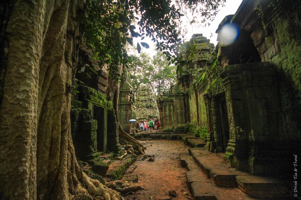 guide to visiting Angkor Wat