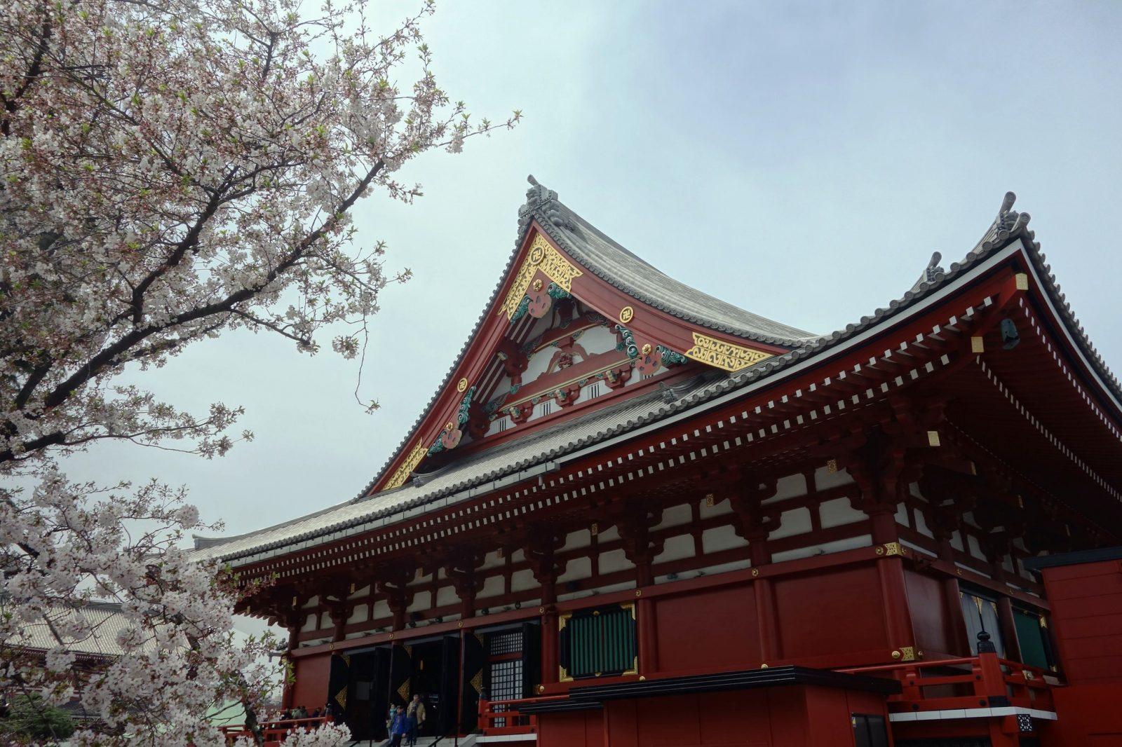 What to do in Tokyo, Japan
