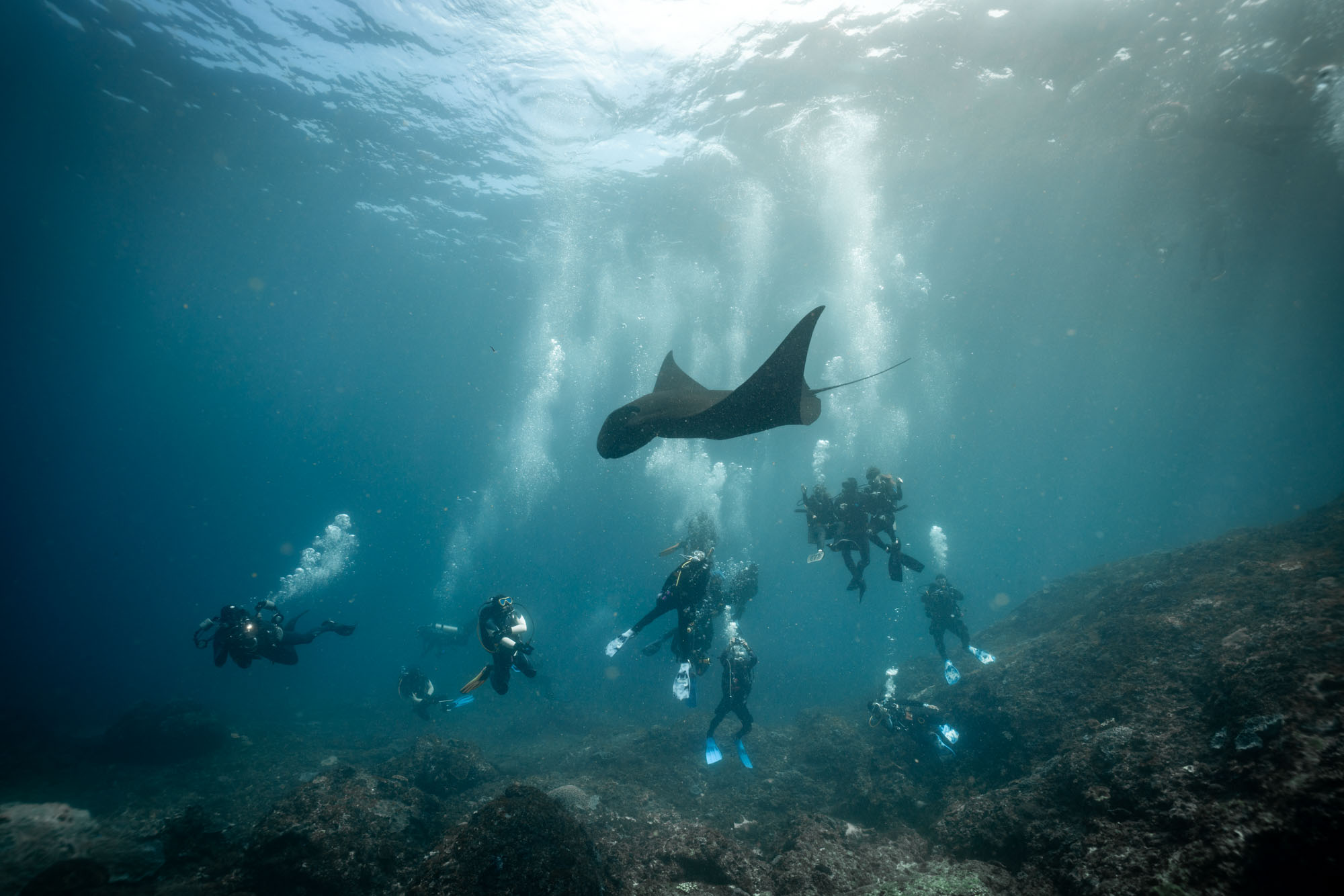 Guide to Diving in Bali, bucket list ideas