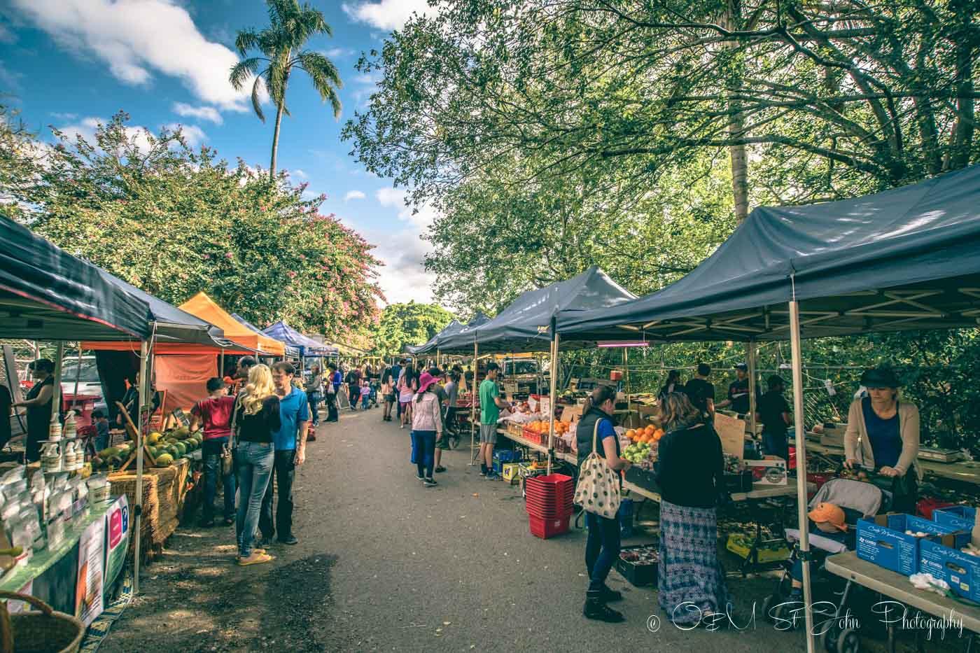 What to do in Brisbane: West End Market, Davies Street, West End. Brisbane. Australia
