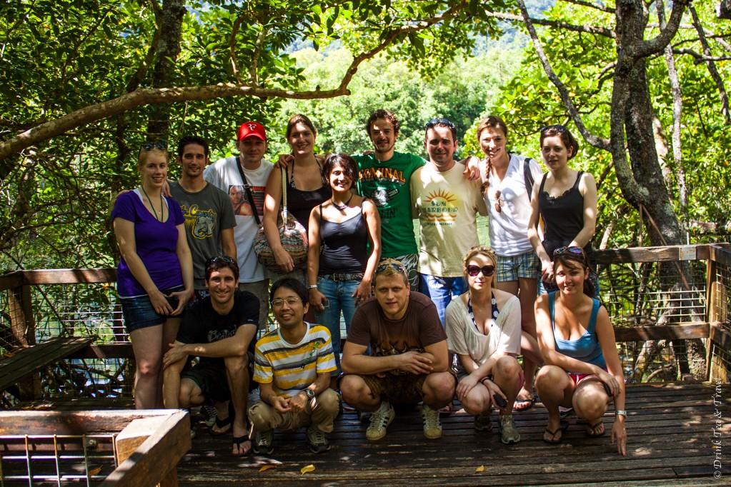 Contiki Australia group in Daintree National Park