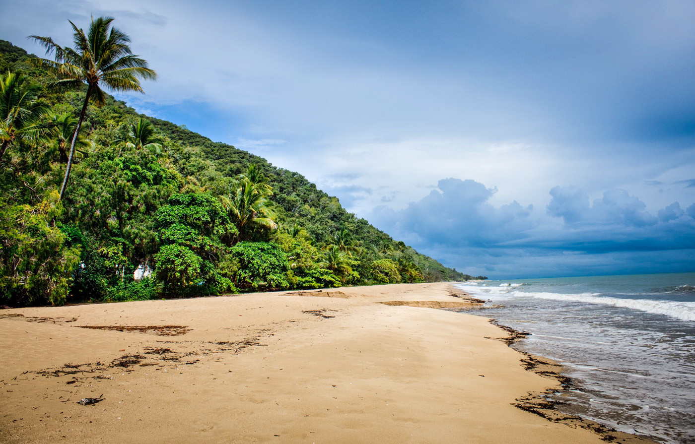 Cape Tribulation Beach, where the rainforest meets the beach