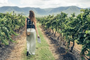 Why Hunter Valley is My Favourite Wine Region in Australia. Cover Photo