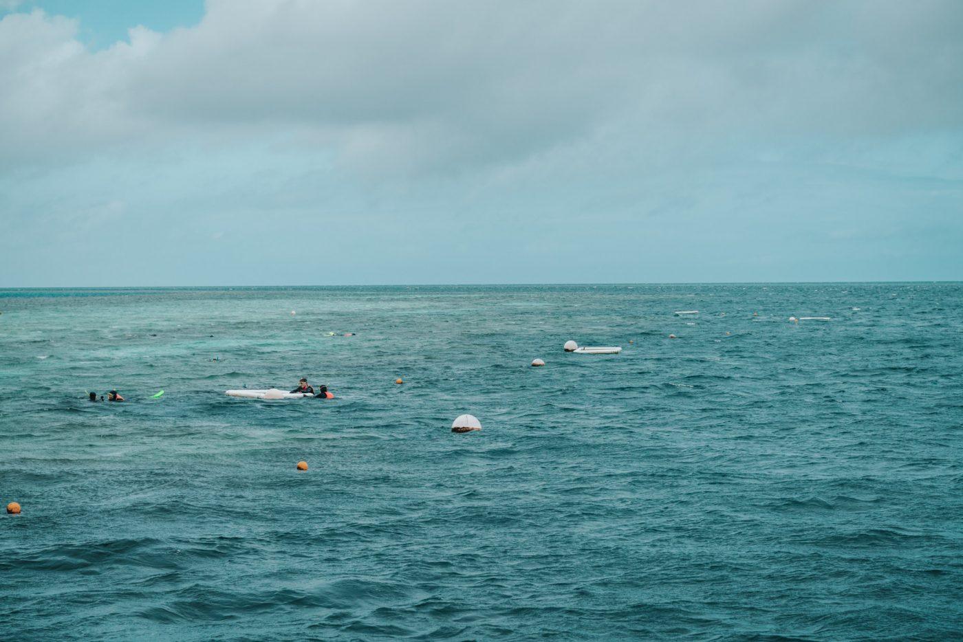 Snorkeling at Heart Pontoon, Reefsleep with Cruise Whitsundays
