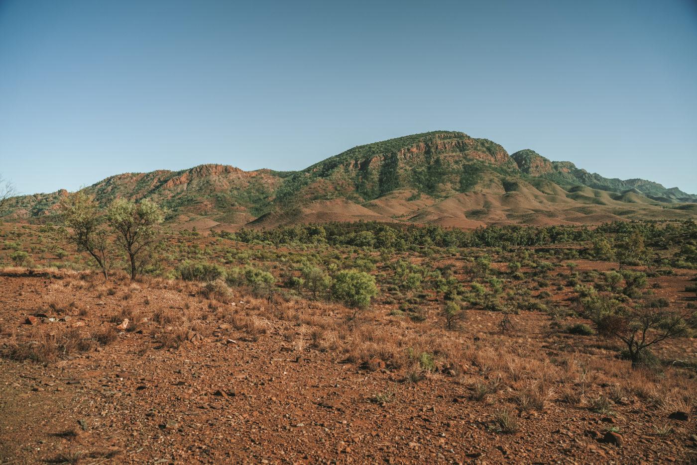 Aroona Valley, Flinders Ranges National Park