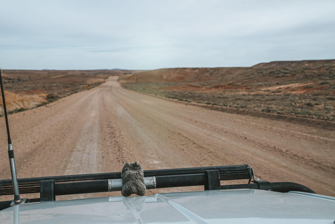 driving along oodnadatta track