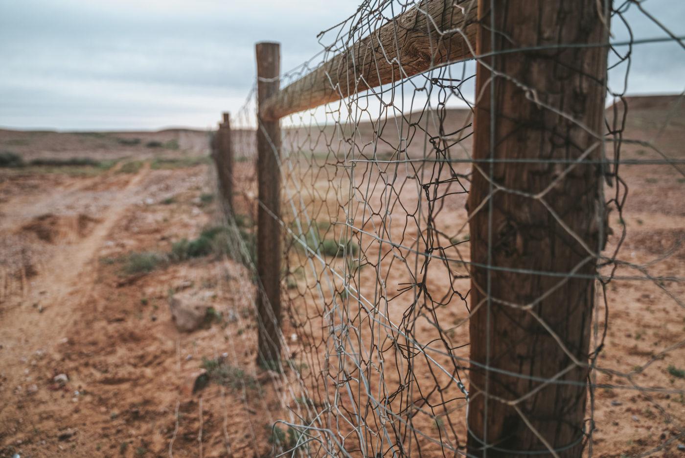 Dingo Fence, Oodnadatta Track