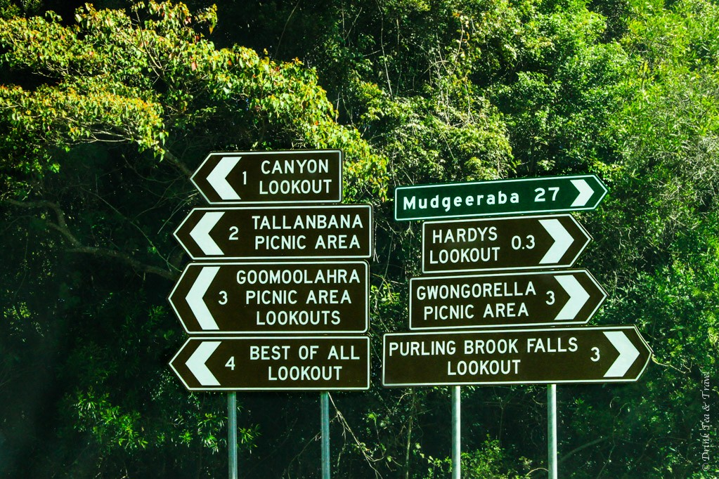 So many options at Springbrook National Park! Where do you even start?