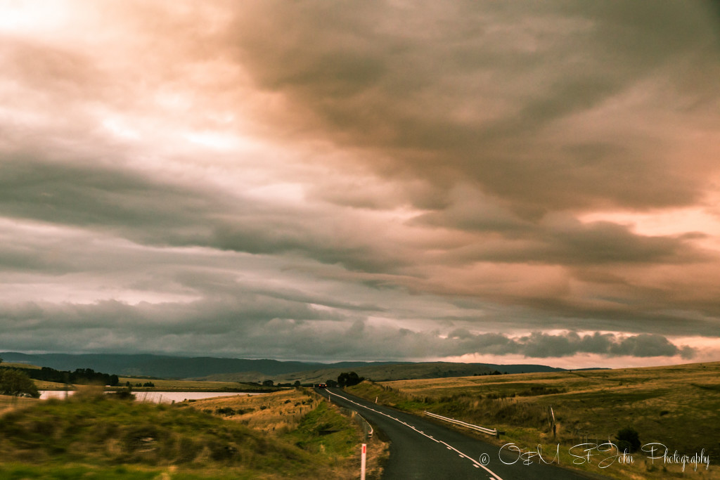 The drives in Tasmania were a sight of their own!