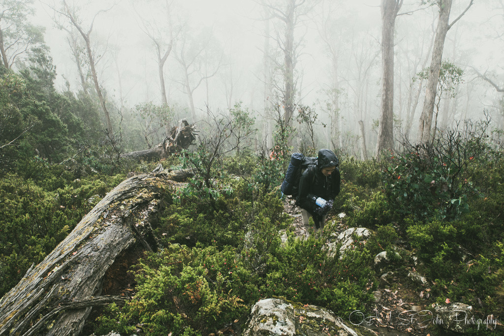 Cold and miserable on the trail to Walls of Jerusalem National Park. Tasmania