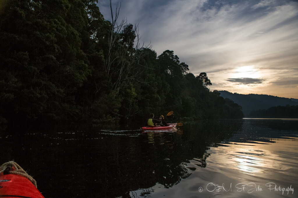 best places to visit in tasmania: Morning kayak on PIermann River in Corinna