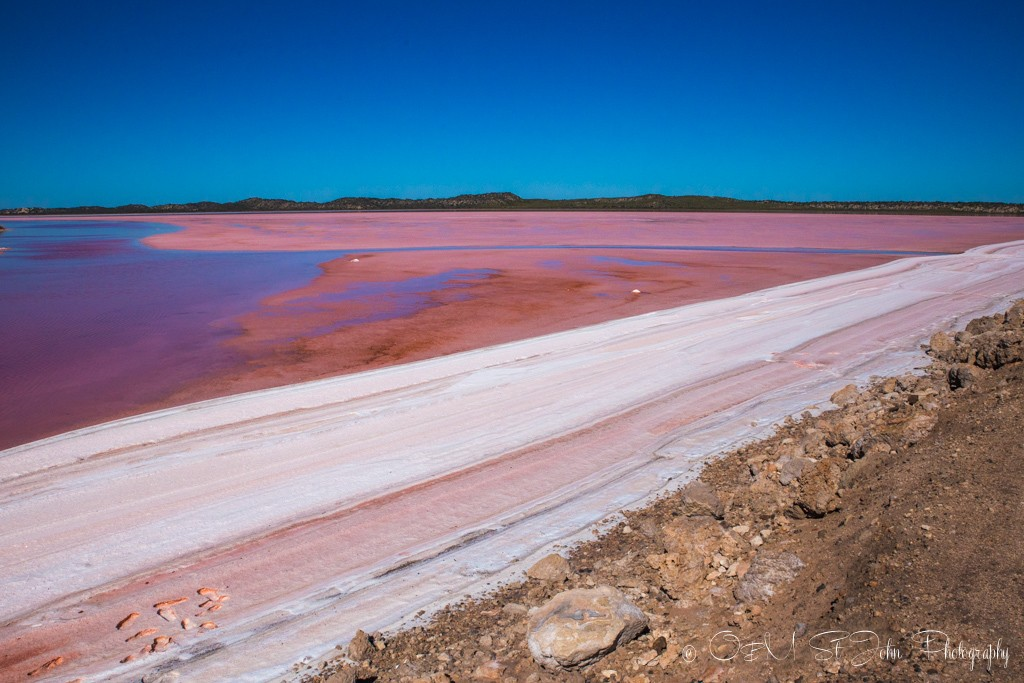Western Australia itinerary: Hutt Lagoon meets the shore forming a layer of hard white foam on the surface. Pink Lake. Western Australia