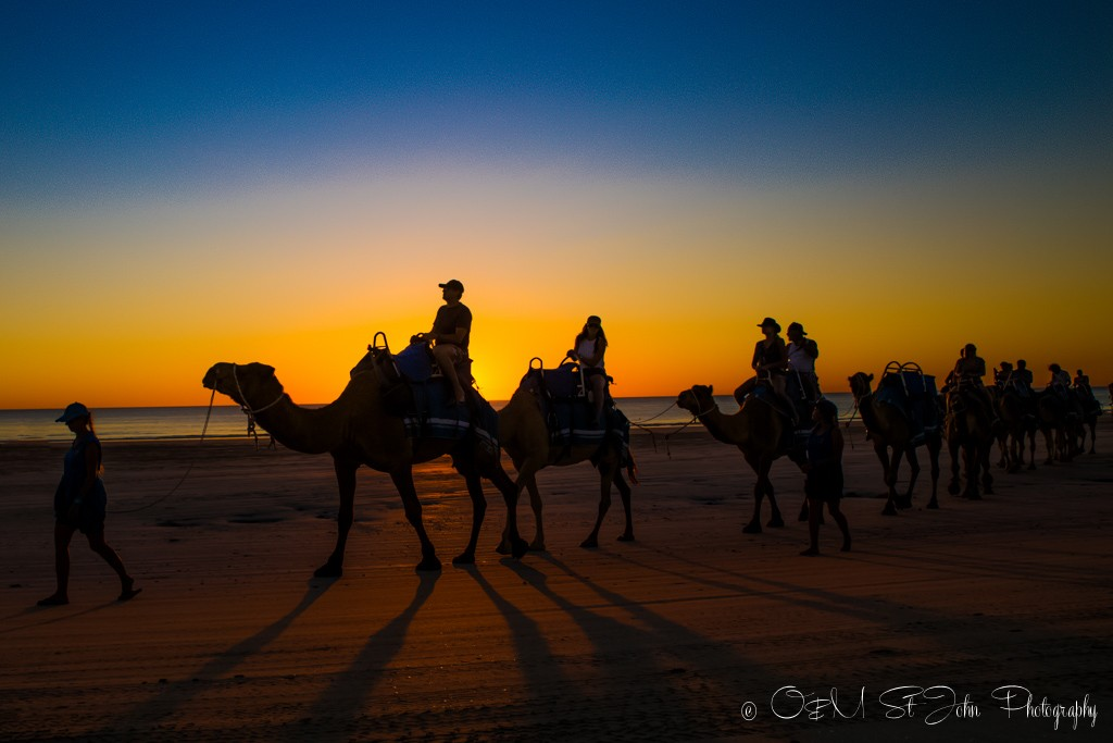 Sunset camel ride on Cable Beach. Broome. Western Australia