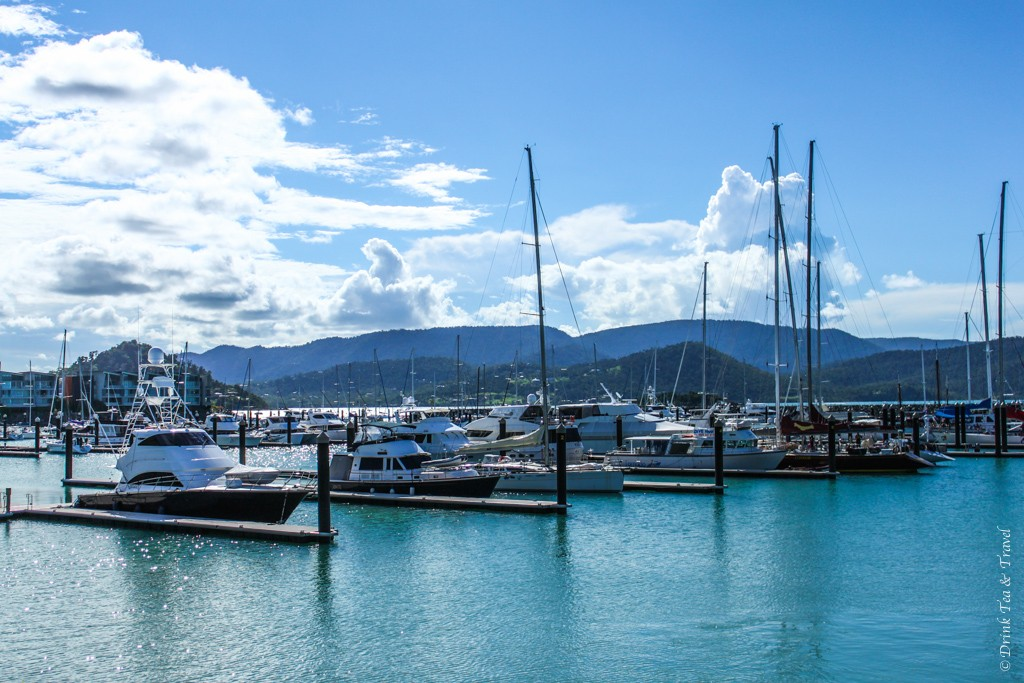 The yachts await in Airlie Beach. Sailing in Whitsundays, Australia