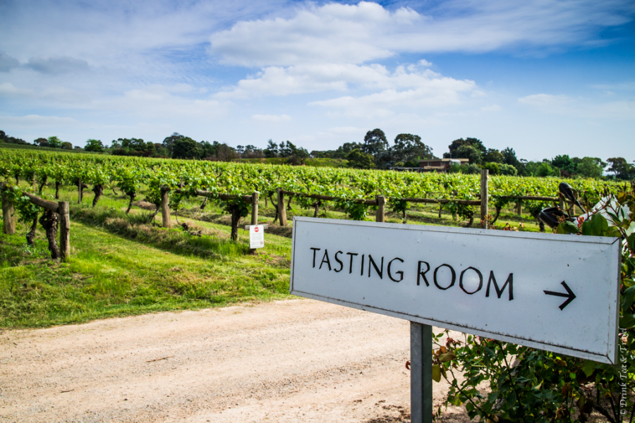 Best Wine Regions in Australia