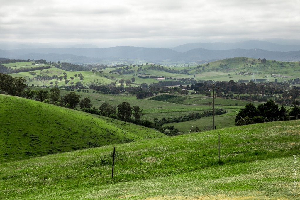 Beautiful views of Yarra Valley