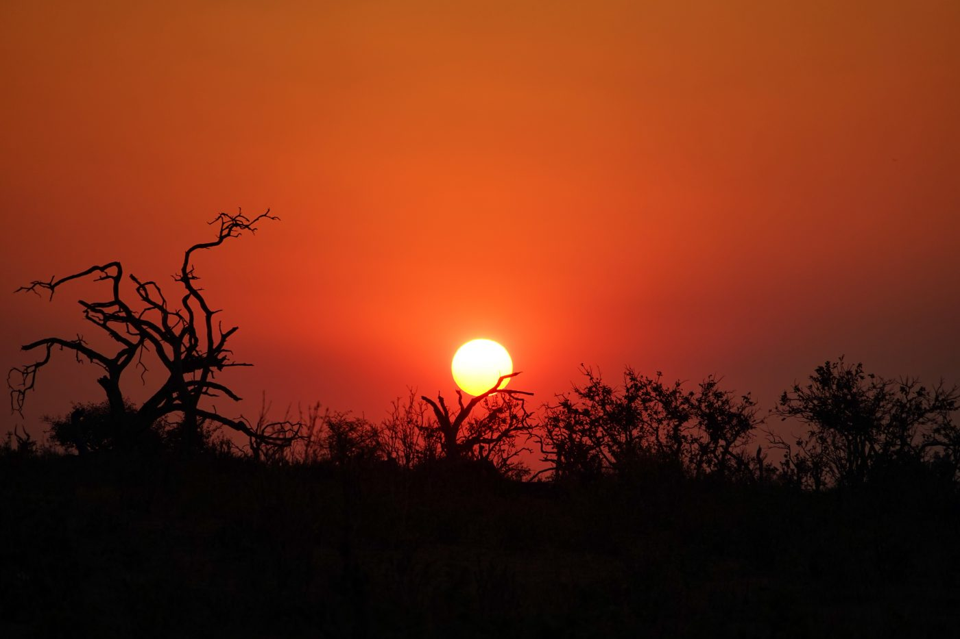 places to watch the sunset: Blood Red Botswanan Sky