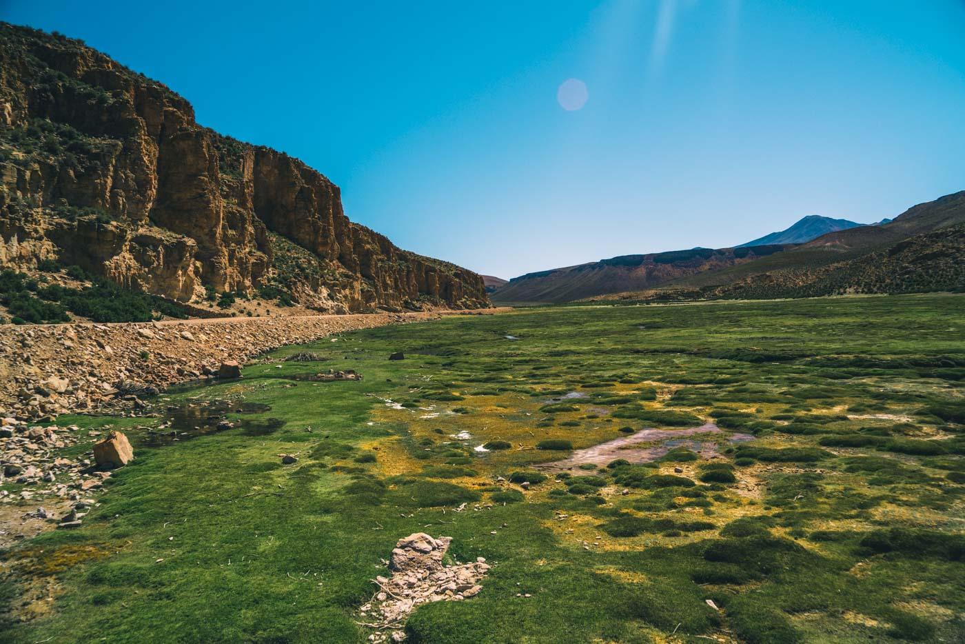 Llama valley