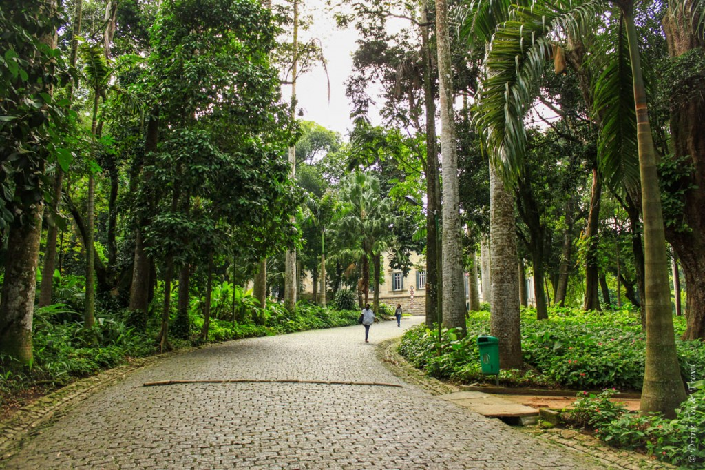hike to Christ the Redeemer: Parque Lage, Rio de Janeiro. The start of our hike to Christ the Redeemer