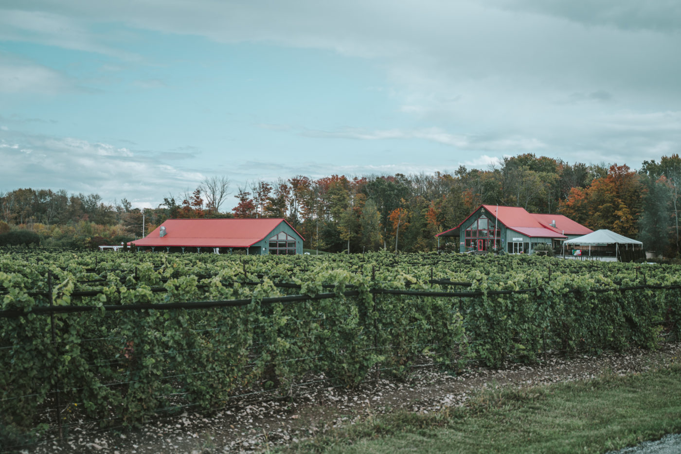 Rosehall Run Winery, Prince Edward County wineries