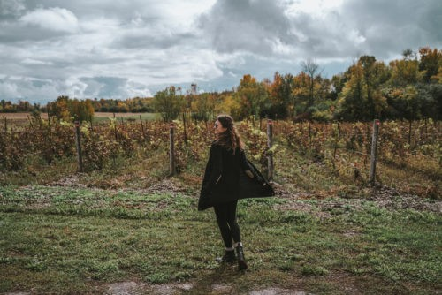 Guide to Visiting Prince Edward County, Ontario